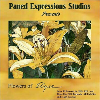 New Title! FLOWERS OF ELYSE Paned Expressions Pattern Book On CD Floral BONUS