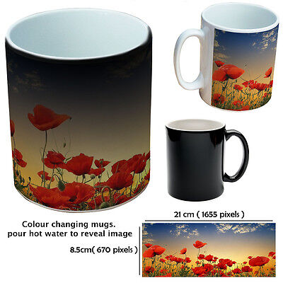 Flower Mugs Colour Changing Custom Mugs Gift Mug For Lady Or Man Flower Lover