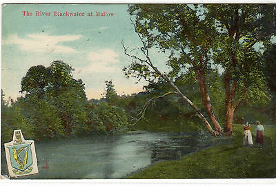 Ireland.  The River Blackwater At Mallow. Printed.  Posted. Single. Standard..