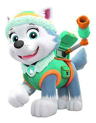 """Paw Patrol Everest Iron On Transfer 5 """"x 6.5"""" for LIGHT Colored Fabric"""
