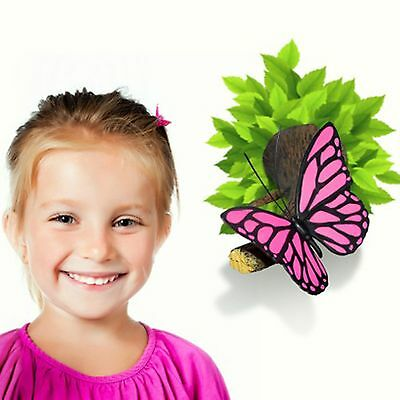 Pink Butterfly 3D Led Wall Light Free Delivery