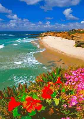 Wipeout Beach, La Jolla (San Diego)  - 3D Lenticular Post Card Greeting Card