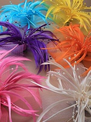 Bright Coloured Large Looped Net & Feather Fascinator On a Forked Clip & Brooch
