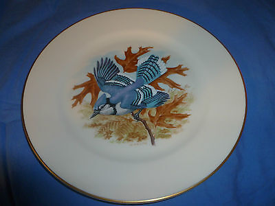 Vintage Blue Jay Bird Collector Plate, Pickard China, USA