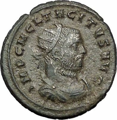Tacitus  receiving wreath from Victory Rare 275AD Ancient Roman Coin  i54443