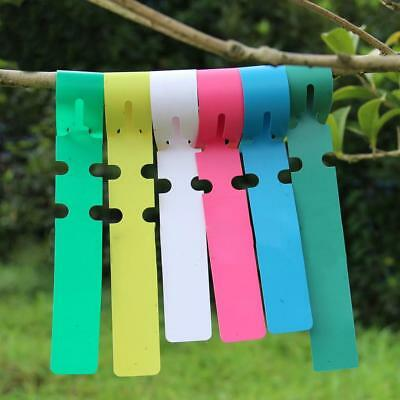 100pcs Plastic Plant Hanging Tags Nursery Gardening Labels Signs 2x20cm Pink