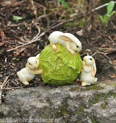 Miniature Garden Rabbits Rolling Cabbage Figure Terrarium Doll House NEW