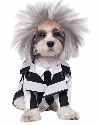 Beetlejuice Funny Dog Halloween Striped Pet Outfit Costume