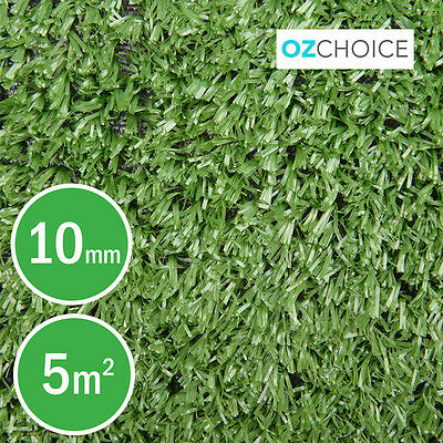 Synthetic Turf Artificial Grass Pile Natural Plastic Plant Fake Lawn 10mm 1x5m
