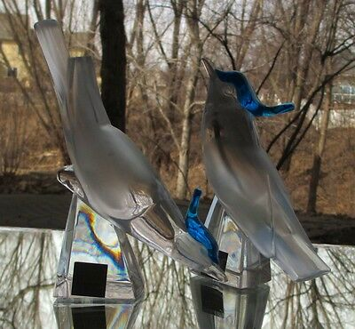 2 LALIQUE FRENCH CRYSTAL Pimlico Birds Blue Crested Blue Jays SIGNED Mint Labels