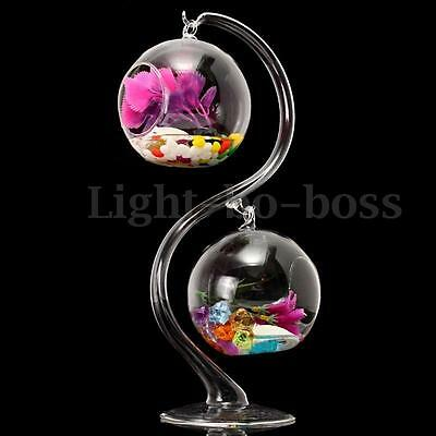 Hanging Glass Flower Plant Vases Hydroponic Container Terrarium+Stand Holder SET