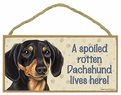 Spoiled Rotten Dachshund Black Tan Dog 5 x 10 Wood SIGN Plaque USA Made