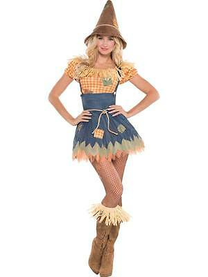 Adult Sultry Scarecrow Costume Sexy Ladies Halloween Fancy Dress Outfit UK 8-20  sc 1 st  PicClick UK & MENS FANCY DRESS Scarecrow Costume Book Week Day Oz Straw Man ...
