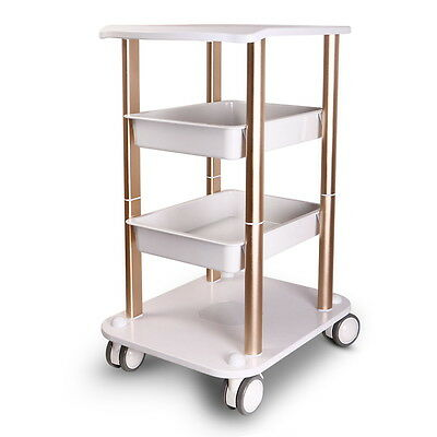 High Quality Rolling Salon Trolley 15KG Bearing Spa Trolley Salon Rolling Cart