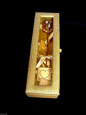 Gold Dipped Real Rose 12 Inch 24K in a Gold Egyptian Casket with Window NEW