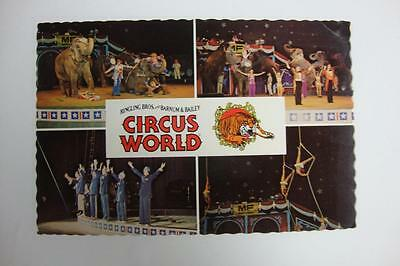 687) The Ringling Brothers And Barnum & Bailey Circus World Elephants Performers