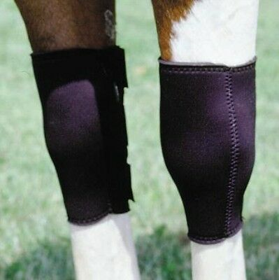 Neoprene Knee Sweat Boots Horse Size Adjustable Black Reduces swelling Support