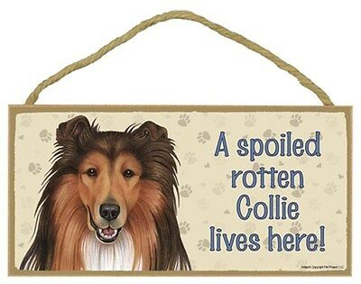 Spoiled Rotten COLLIE Dog 5 x 10 Wood SIGN Plaque USA Made