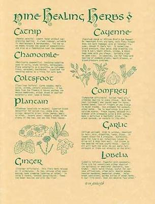9 HERBS Parchment Page for Book of Shadows!