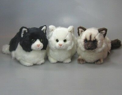 New Plush Cuddly Critters Cat Soft Toy Kitten Teddy Assorted Colours