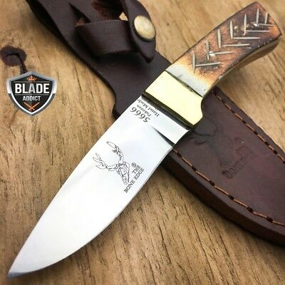 "6"" Bone Handle Fixed Blade Camping Hunting Bowie Skinner Knife Fishing Outdoor"
