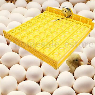 Automatic 56 Chicken Egg Turner Tray Quail Duck Incubator With 110V/220V Motor