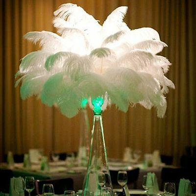 10pcs Real Large Ostrich Feathers For Wedding Decorations 12-14inch White