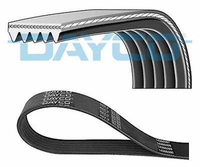 TO CLEAR - NEW DAYCO - 5 RIB x 1815 mm  V-RIBBED BELT - 5PK1815