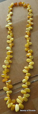 Antique Natural  butterscotch egg yolk Baltic Amber button Beads Necklace   54gr