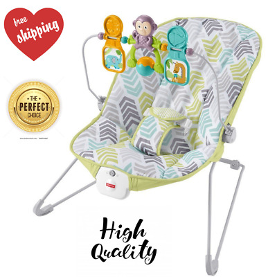 Fisher-Price Baby's Infant Bouncer Chair Vibrating Calming Green Blue Grey