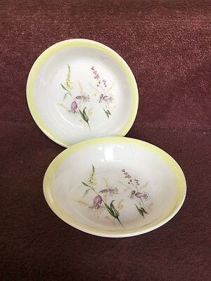 Foley  Bone China Summertime Two Small Cereal / Fruit Dishes