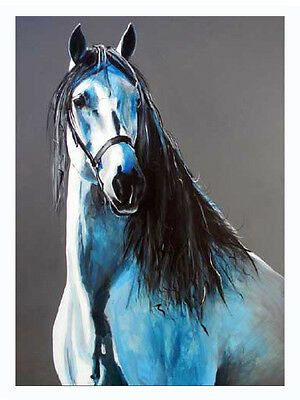 'Sultan' Equine greetings card from an original by Jessica Hill blank inside