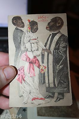 3 antique Victorian trade cards portraying monkeys in Victorian dress