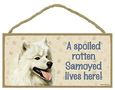 Spoiled Rotten SAMOYED Dog 5 x 10 Wood SIGN Plaque USA Made