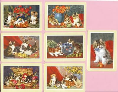 modern wide playing card swap cards cats kittens