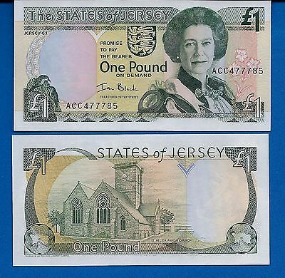 Jersey P-26 1 Pound Year 2000 Birds Uncirculated Banknote Europe