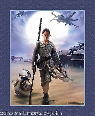 STAR WARS: THE FORCE AWAKENS - REY & BB8 - FABRIC PANEL - NEW 100% Cotton