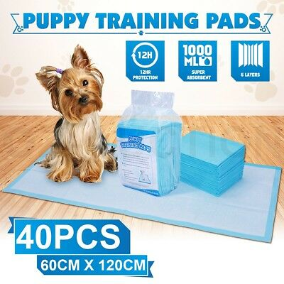 Indoor Pet Dog Puppy Training Pads Toilet Absorbent Puppies Dogs 60x120cm 40PCS