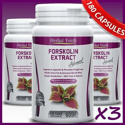3 x BOTTLES 180 Capsules 2000mg Daily FORSKOLIN PILLS Coleus Forskohlii EXTRACT