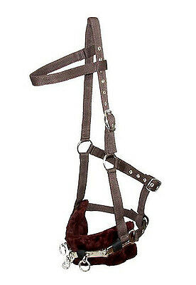 Horse & Western Tack Training Aid Nylon Lunging Cavesson Brown Full