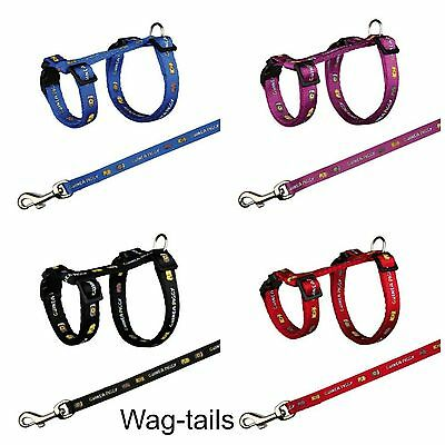 Trixie Nylon Patterned Guinea Pig Harness And Lead Set Multi 6264