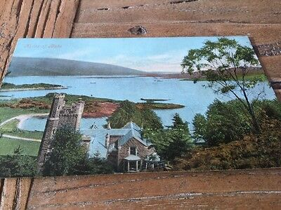 Old Postcard  Mules Of Bute