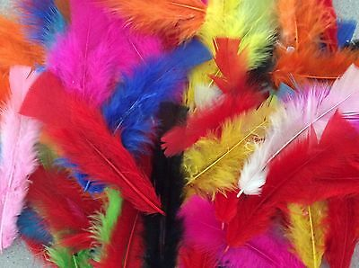 Craft Feathers Assorted Bright Colours (60gm - Over 300)