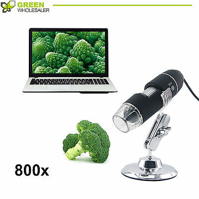USB 8 LED Light Digital Microscope Endoscope 20X-800X 2MP Video Camera Magnifier