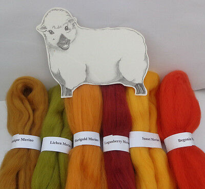 MERINO WOOL AUTUMN LANDSCAPE SHADES dyed wool tops roving / needle felting  60g