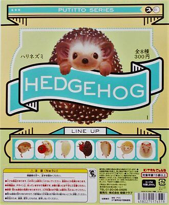 New PUTITTO HEDGEHOG All 8 types Complete Set KITAN CLUB from Japan