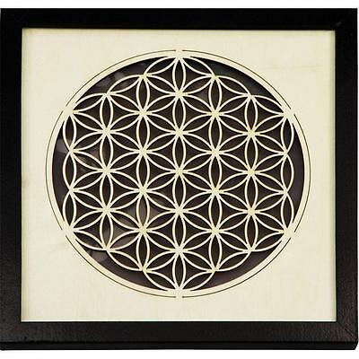 Wooden Framed Flower of Life Wall Hanging w/Light!