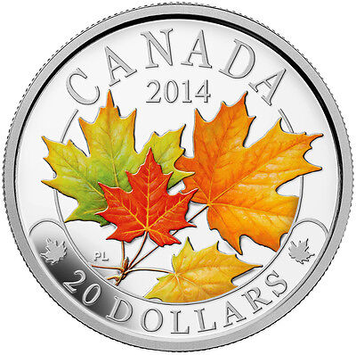 2014 Canada $20 Fine Silver Coin - Majestic Maple Leaves with Colour