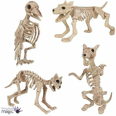 halloween dog cat rat bird skeleton decoration animal bones prop shop display