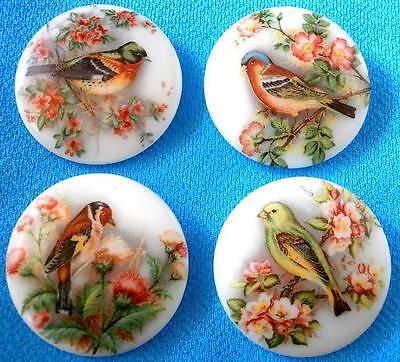 Collection of 4 Czech Glass Decal Buttons #G289 - 4 SWEET DIFFERENT BIRDS